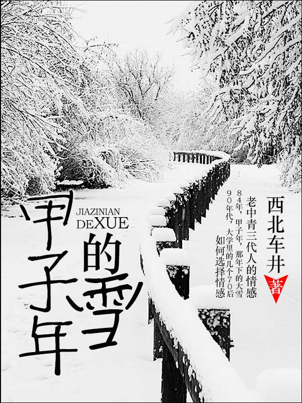 甲子年的雪