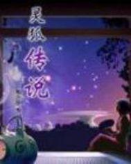 灵狐小说_