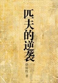 《匹夫的逆袭》电子书免费下载