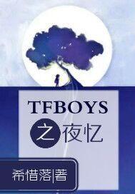 tfboys之夜忆