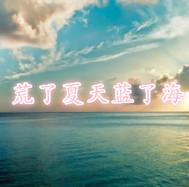 荒了夏天蓝了海