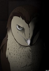 猫头鹰的万花筒